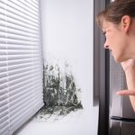 First Call Mold Removal have been serving the Poughkeepsie, Hopewell Junction, and Newburgh, NY areas for over 20 years. This article explains why you should always hire professional to remove mold from your home or business, listing the 8 steps necessary to properly remediate mold. In addition, we list 10 questions that you need to ask any contractor you consider hiring. Get YES answers to these 10 questions, particularly, questions 2 and 8.