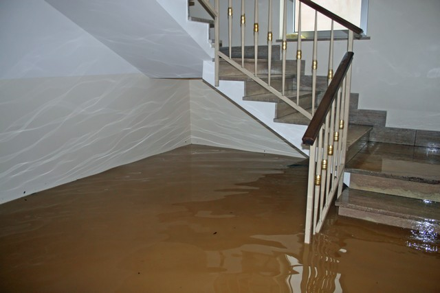 Going On Vacation? These 4 Tips Will Help You Prevent Water Damage and Mold Growth!