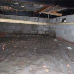Why Does Mold Grow In Crawlspaces? Did you know that 40% of the air in your home seeps up through your crawlspace. If mold is growing this will negatively impact the air you breath. This purpose of this article is to explain why mold grows in your crawlspace and how it could be contaminating your indoor air. In addition, we explain what you can do to fix the problem. Learn more!