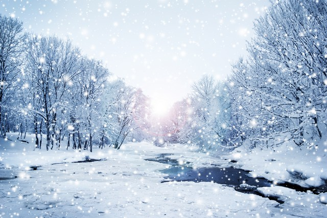 Top 25 Winter Mold Prevention Tips!