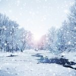 Winter Mold Prevention Tips!: As the temperature gets colder, we all tend to stay indoors more. To ensure that you stay healthy, please pay attention to the quality of the air you breathe. Mold is not just a concern in the summer when heat and humidity are at their peak. The main purpose of this article is to list and explain 7 key mold facts and provide you with 25 tips to prevent mold in your home during the winter!