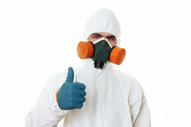 Always Hire A Professional To Remove Mold From Your Home or Business!