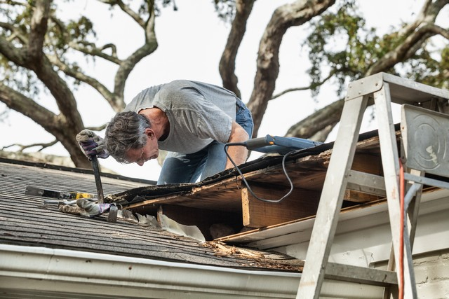 Inspect Your Roof and Attic