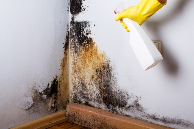 Avoid Using Bleach For Clean Up!