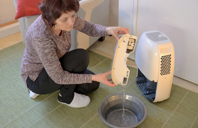 Invest In A Dehumidifier