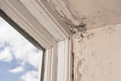 Mold Reduces Property Value!