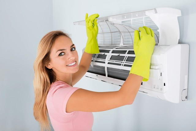 Air Conditioner Mold Prevention!