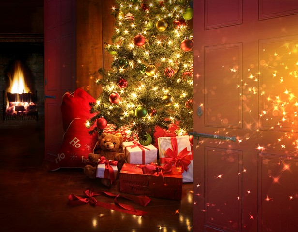 Got Christmas Tree Mold Prevention and/or Fire Prevention Questions?