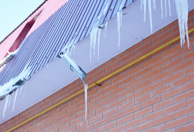 Ice Dams and Mold: The Facts!