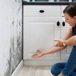 10 Questions You Should Ask Before Hiring A Mold Removal Contractor! - Finding mold in your home or business can be stressful, particularly because it is difficult to know if the contractor you hire will do a proper job. In this article we explain how to properly hire a professional contractor. It starts with these 10 questions and request for these three documents.