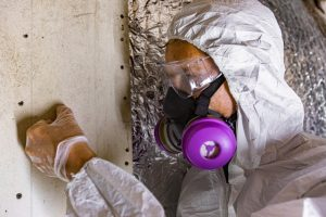 Mold Cleanup Poughkeepsie NY