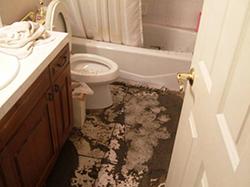 Bathroom toilet overflow Poughkeepsie